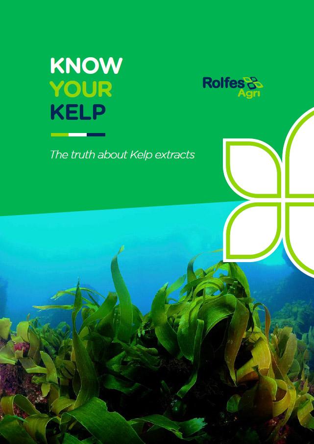 Rolfes Kelp Booklet PDF